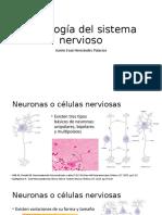Neurohistología.pptx