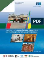 Rapport Enquete Nationale Sur Les Pme