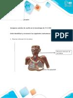 Cuestionario - Unidad 2. Tarea 4 - Cuello, Tórax y Corazón (2).docx