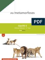 CienTic5- I5 Metamorfoses.ppt