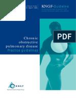 Chronic_Obstructive_Pulmonary_Disease KNGF