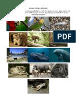 Animales en Peligro de Extinción y Animales Extintos de México.docx