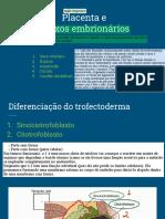 Slides com anotações- Placenta e anexos embrionários