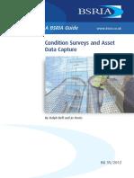 Condition Surveys and Asset Data Capture _ Sample.pdf