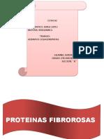 PROTEINAS FIBROSAS