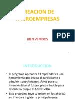 CREACION DE MICROEMPRESAS