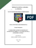 valdivia-calixto-jorge-andres.pdf