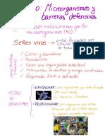 guia repaso microorganismos 7mo basico.pdf