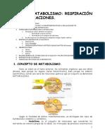 tema10 respiración y fermentación.pdf