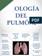 fisiologia del pulmón mtch