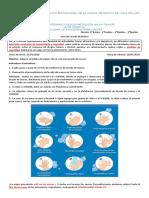 Guía de lavado de manos 8°B-3°M 2020