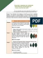 T_Fert_ins_DeficienciasNutricionales_1.pdf