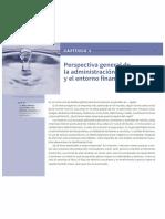 Brigham cap 1.pdf
