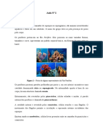 Aula prática Porifera.doc