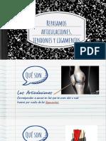articulación, ligamento y tendon.pdf