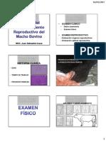 BSE Macho Bovino Juan Sebastian Issasa.pdf