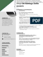 73 Curriculum Vitae Empresarial