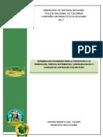 PROPUESTA MUNICIPIO NATAGAIMA - TOLIMA.doc