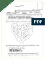 Formato Examen - 2020 - 0(1)  JOSEAYALA