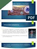 presentación inmunologia 2