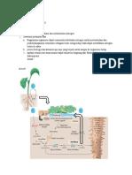 tugas fisiologi tumbuhan