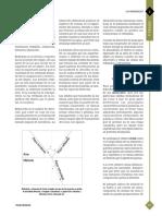Introducción a la Geología con Ejemplos en Colombia - INGEOMINAS.pdf