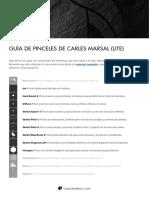 Guía de pinceles de Carles Marsal (Lite)