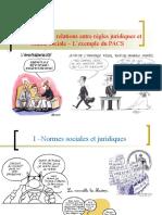 option - chapitre droit et régulation sociale