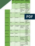Resumen Articulaciones.docx