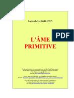 ame_primitive.doc