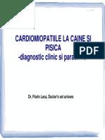 Cardiomiopatiile_la_caine_si_pisica