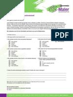 RS-Maler-Fragebogen_A4_WEB_ok