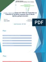 Etude Transcriptomique de l'Effet de l'Exposition au Fullerène22