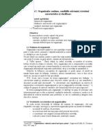 1_ organizatia-1.doc