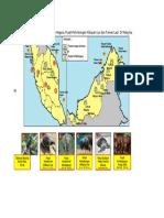 Peta taman negara.doc