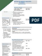 18072019 MODELO DE CV 3.docx