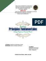 Analisis Principios COPP