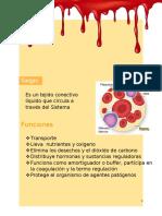 26.GuiaSangre.docx