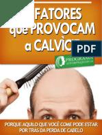 7-Fatores-Que-Provocam-a-Calvície.pdf