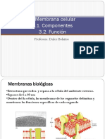 3.Membrana_PDF