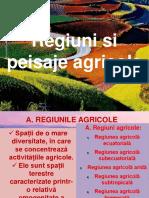 11._regiuni_si_peisaje_agricole.pdf