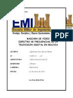 MASCARA DE VIDEO
