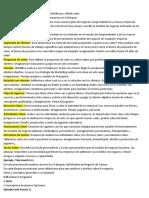 222MODELO DE NEGOCIO CANVAS
