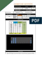 INDICADORES DE GESTION -Gestion de la informacion