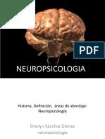 Historia, Definición,  áreas de abordaje de la Neuropsicología
