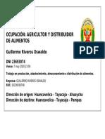 pase_vehicular_vqxhe4z4g_A05.pdf