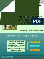 01-PROGRAMACION Y DIVERSIFICACION (1)