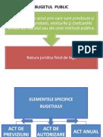 DREPT FINANCIAR GRAFIC 3BUGETUL PUBLIC SI PRINCIPII(1)