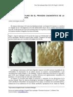 Biopsia Yeyuno_Vol_20_2_Suplemento_1.pdf