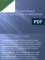 Ariile_naturale_protejate